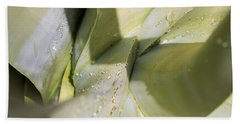 Giant Agave Abstract 3 Beach Sheet