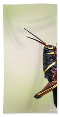 Giant Eastern Lubber Grasshopper Beach Towel