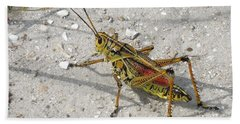 Beach Towel featuring the photograph Giant Orange Grasshopper by Ron Davidson