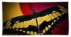 Giant Swallowtail Butterfly Beach Towel