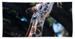 Giraffe 7d8853 Beach Towel