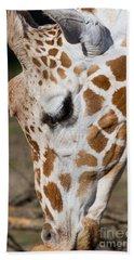 Giraffe 7d8902 Beach Towel