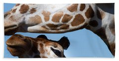 Giraffe 7d8913 Beach Towel