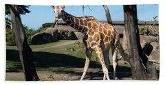 Giraffe Dsc2849 Beach Towel