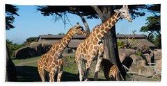 Giraffe Dsc2866 Beach Towel