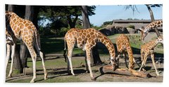 Giraffe Dsc2872 Long Beach Towel
