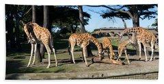 Giraffe Dsc2872 Beach Towel
