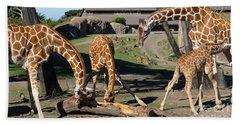 Giraffe Dsc2873 Long Beach Towel