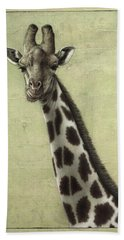 Giraffe Beach Towel by James W Johnson