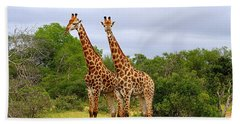 Giraffe Males Before The Storm Beach Towel