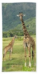 Giraffe Mother And Calftanzania Beach Towel