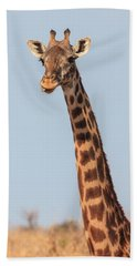 Giraffe Tongue Beach Towel by Adam Romanowicz