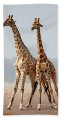 Giraffes Standing Together Beach Towel by Johan Swanepoel