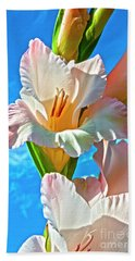 Beach Towel featuring the photograph Gladiolus by Heiko Koehrer-Wagner