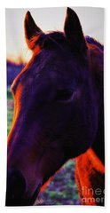 Glamour Shot Beach Towel by Robert McCubbin