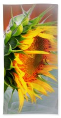 Glorious Sunflower Beach Sheet by Kay Novy