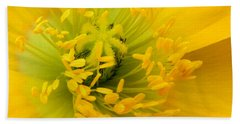 Beach Towel featuring the photograph Glory Of Nature by Deb Halloran
