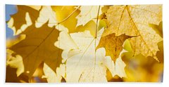 Glowing Fall Maple Leaves Beach Towel