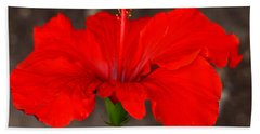 Glowing Red Hibiscus Beach Towel