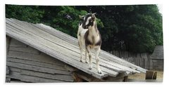 Beach Towel featuring the photograph Goat On The Roof by Kerri Mortenson