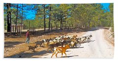Goats Cross The Road With Tarahumara Boy As Goatherd-chihuahua Beach Sheet