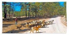 Goats Cross The Road With Tarahumara Boy As Goatherd-chihuahua Beach Towel
