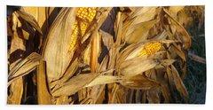 Beach Towel featuring the photograph Golden Corn by Joseph Skompski