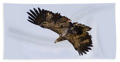 Beach Towel featuring the photograph Golden Eagle by J L Woody Wooden