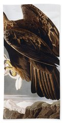 Golden Eagle Beach Towel by John James Audubon