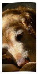 Golden Retriever Dog Sleeping In The Morning Light  Beach Towel