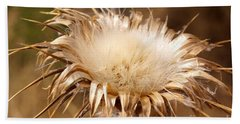 Golden Thistle Beach Sheet