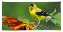 Goldfinch Pose Beach Sheet by Dianne Cowen
