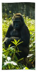 Gorilla Sitting On A Stump Beach Towel by Chris Flees