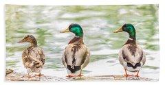Got My Ducks In A Row Beach Towel