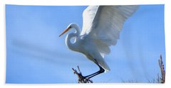Beach Towel featuring the photograph Graceful Landing by Deb Halloran