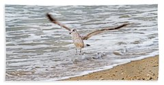 Graceful Landing Beach Towel by Betsy Knapp