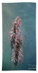 Beach Towel featuring the photograph Grasses - Art By Nature by Liz  Alderdice