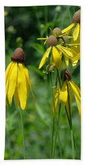 Beach Towel featuring the photograph Gray-headed Coneflower Group by Daniel Reed
