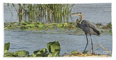 Beach Towel featuring the photograph Great Blue Heron by Carol  Bradley