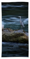Beach Towel featuring the photograph Great Blue Heron by Belinda Greb