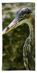 Beach Towel featuring the photograph Great Blue Heron by Dee Dee  Whittle