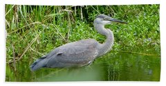 Great Blue Heron  Beach Sheet by Susan Garren