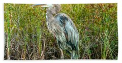Great Blue Heron Waiting For Supper Beach Towel