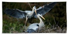 Great Blue Herons Nesting Beach Towel