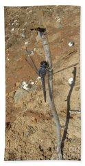 Slaty Skimmer Dragonfly Shadow Beach Towel by Donna Brown