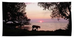 Beach Towel featuring the photograph Great Dane Sunset by Aimee L Maher Photography and Art Visit ALMGallerydotcom