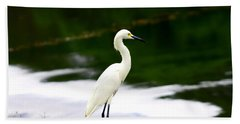 Great Egret Beach Sheet by Debra Forand