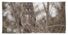 Great Grey Owl Beach Sheet by Eunice Gibb