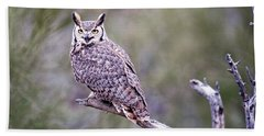Beach Towel featuring the photograph Great Horned Owl by Dan McManus