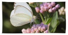 Great Southern White Butterfly On Pink Flowers Beach Sheet